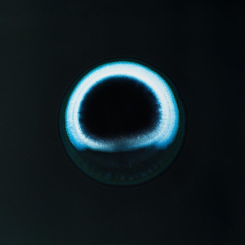 drogue microscope macro 16 Valium 800x800 Des drogues sur films au microscope