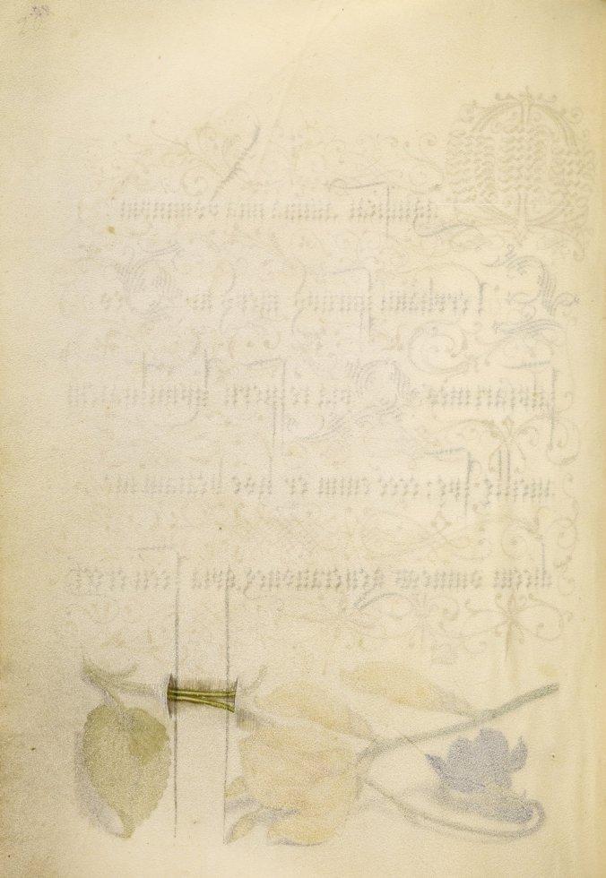 Mira-calligraphiae-monumenta-06