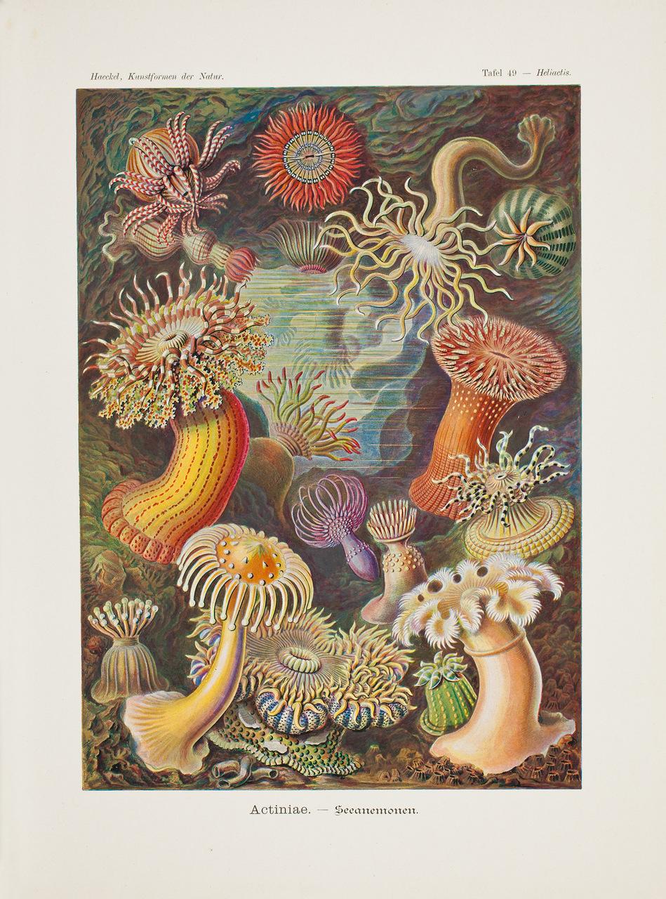 illustration-medicale-biologie-05