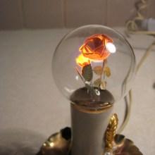 Des ampoules avec des filaments en forme de fleurs