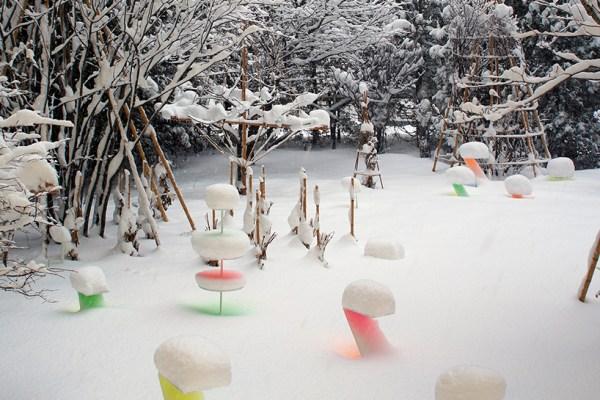 Le jardin après la neige