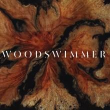 Ce stop motion dévoile les mondes merveilleux à l'intérieur du bois