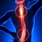 Palmitoiletanolamide (PEA), il Killer dei dolori. Un anti-infiammatorio naturale