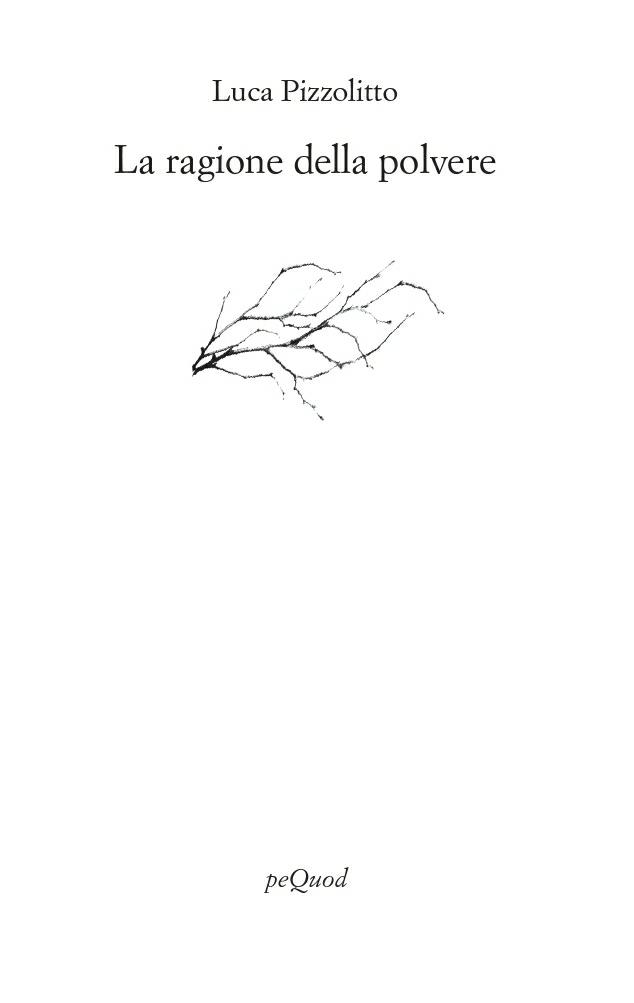 La ragione della polvere - Luca Pizzolitto
