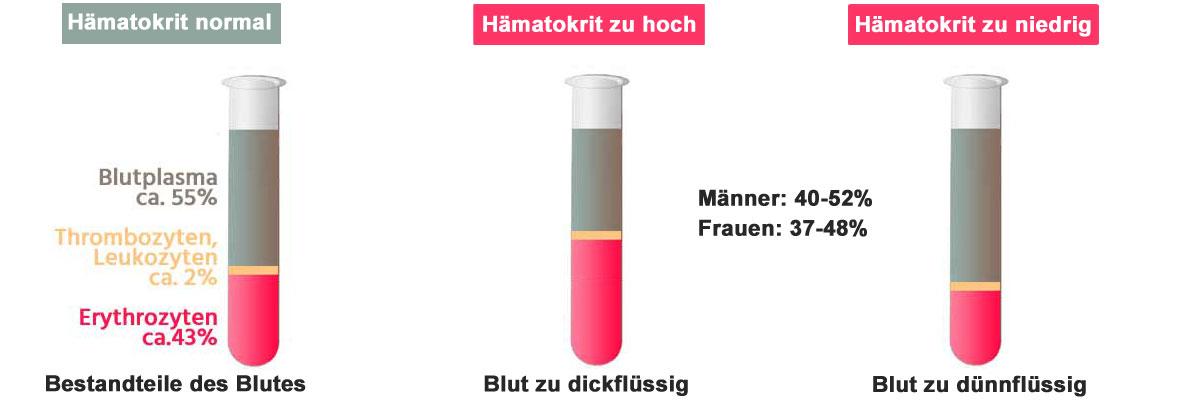 Blutbilderklärung