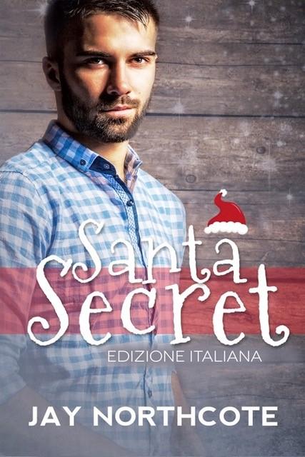 Santa Secret Book Cover