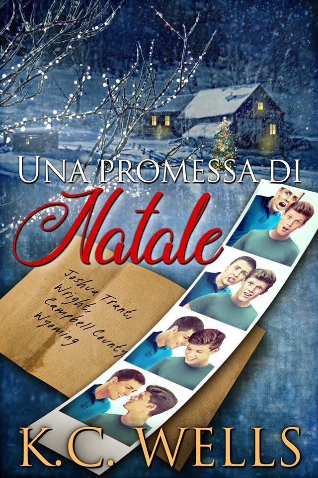 UNA PROMESSA DI NATALE Book Cover