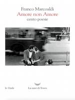 AMORE NON AMORE Book Cover