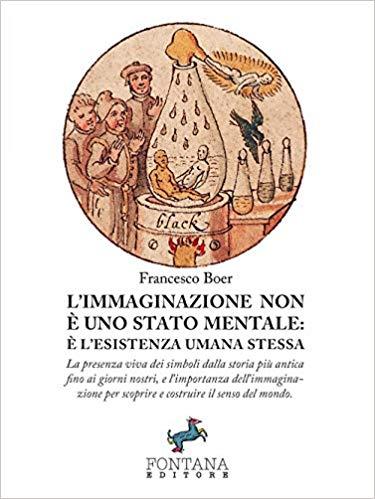 L'IMMAGINAZIONE NON E'UNO STATO MENTALE Book Cover