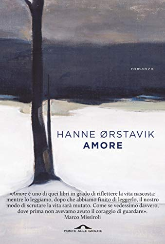 Amore Book Cover