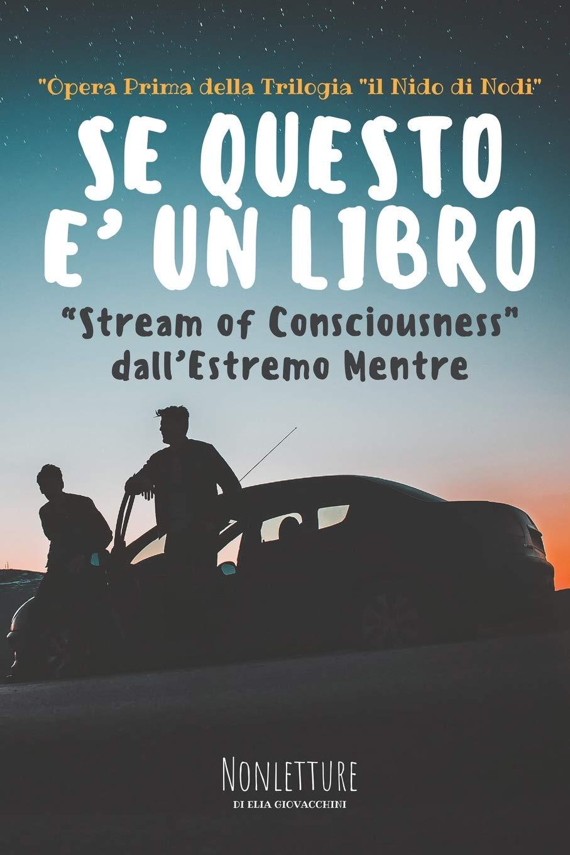 SE QUESTO E' UN LIBRO Book Cover