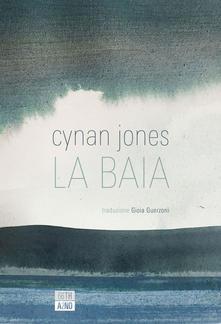 La baia Book Cover
