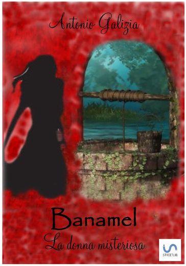 Banamel. La donna misteriosa Book Cover