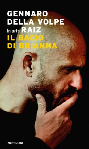 Il bacio di Brianna Book Cover