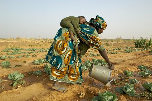 17giu-agricoltura-in-africa