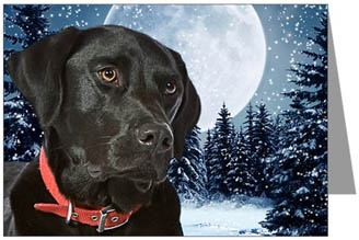Chocolate Labrador Christmas Cards Christmas Lights Card