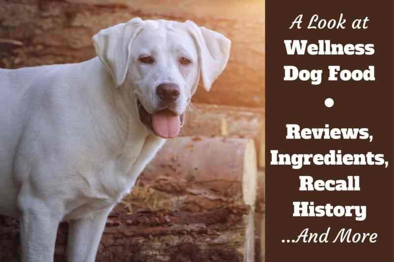 First Mate Australian Lamb Dog Food Reviews