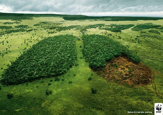 Anuncios tema medioambiental