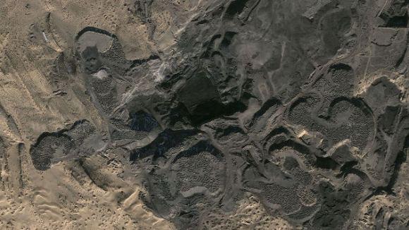 Primeras fotos bosque fósil hallado Mongolia