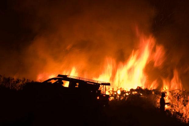 Bacterias recuperar paisaje tras incendio