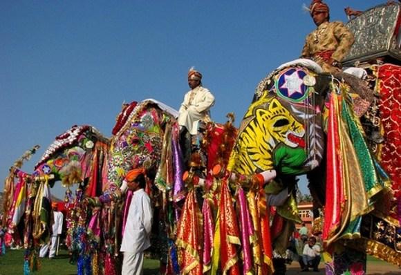 Hastimangala Festival Elefante Jaipur