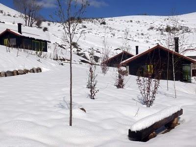 Cabañas patagónicas en los Picos de Europa