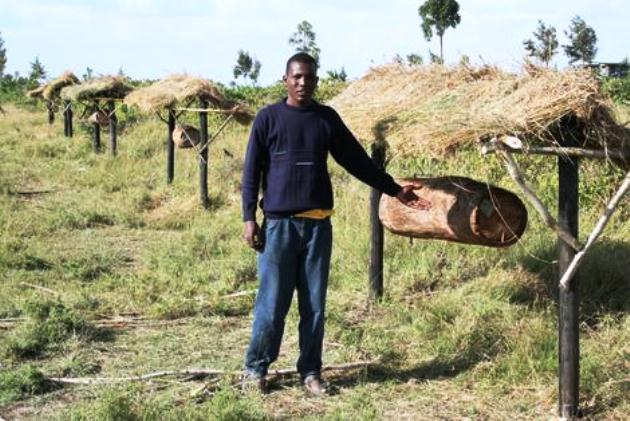 Abejas para alejar a los elefantes de los cultivos en África