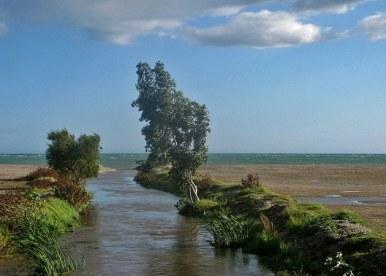 La desembocadura de los ríos podría producir el 13 por ciento de la energía mundial