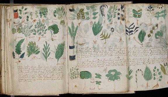 El misterioso Códice Voynich