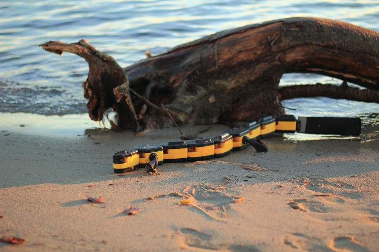 Salamandra Robótica II, un robot anfibio capaz de nadar y caminar 2