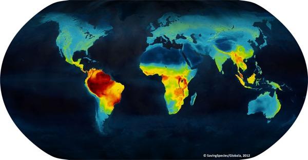 mapa biodiversidad mundial