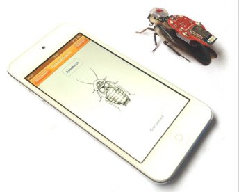 La polémica de las cucarachas teledirigidas desde el iPhone