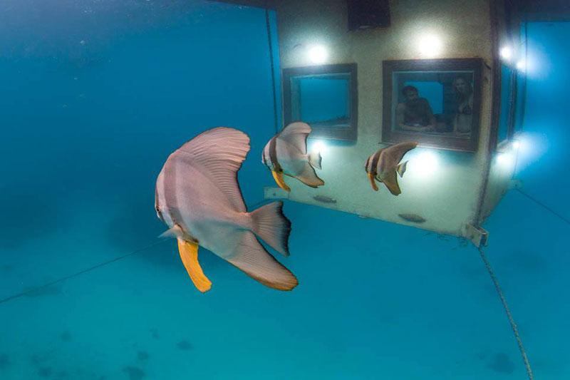 underwater-hotel-room-pemba-island-tanzania-africa-3