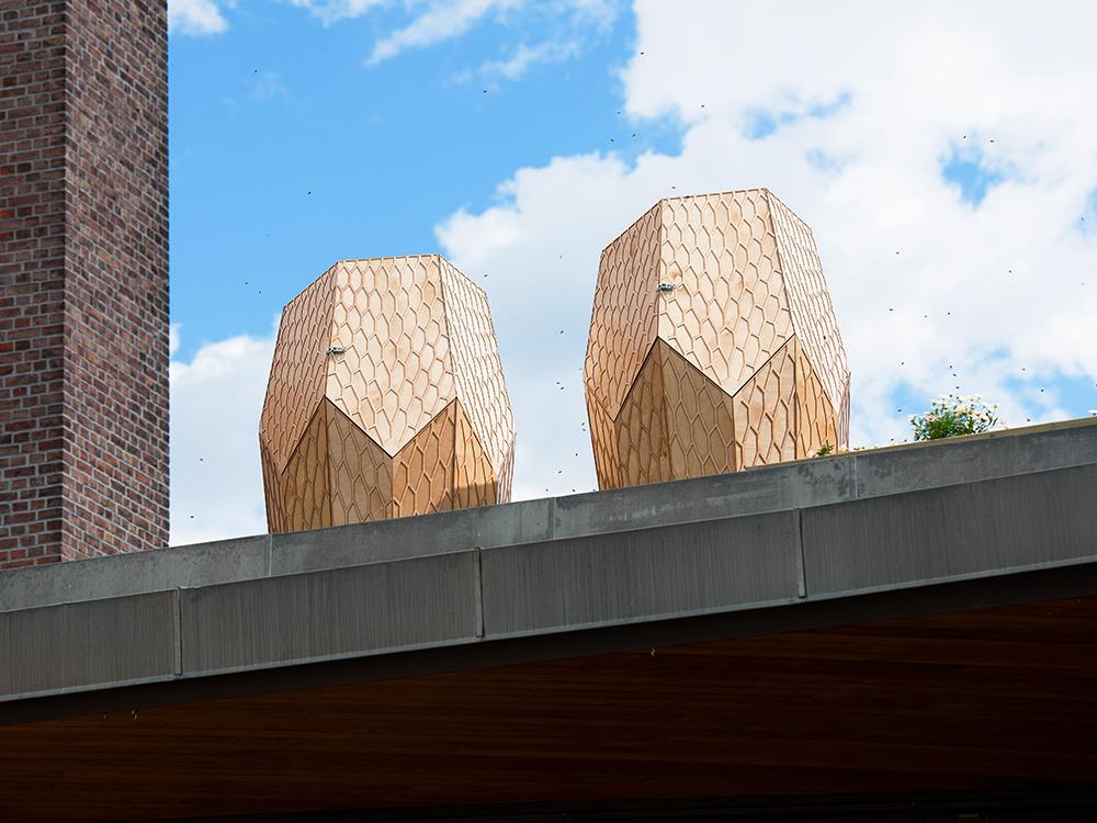 Colmenas futuristas en Oslo diseñadas por Snøhetta