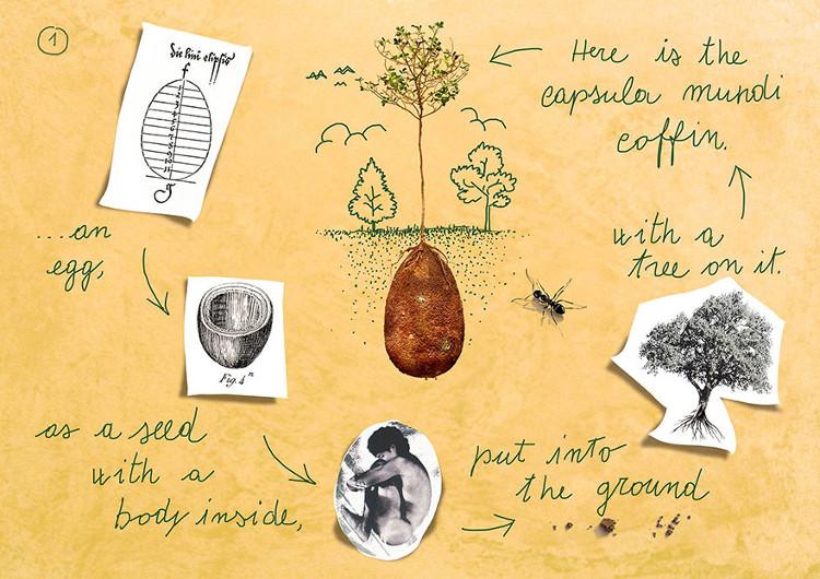 Fascinante ecologia propuesta sepultura Capsula Mundi 2