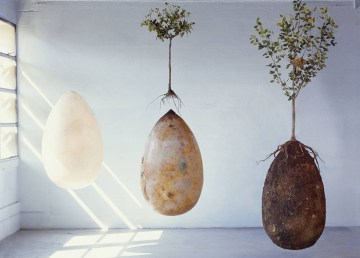La fascinante y ecológica propuesta de sepultura de Capsula Mundi 1