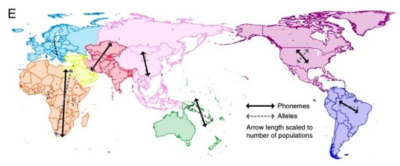 lenguajes genes geografia-1