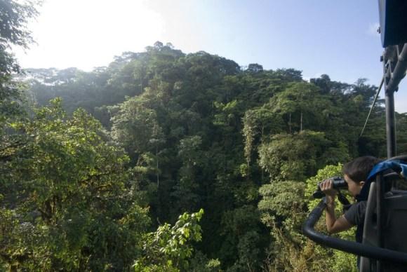 Pedaleando copas arboles Ecuador 2