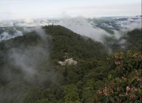 Pedaleando copas arboles Ecuador 3