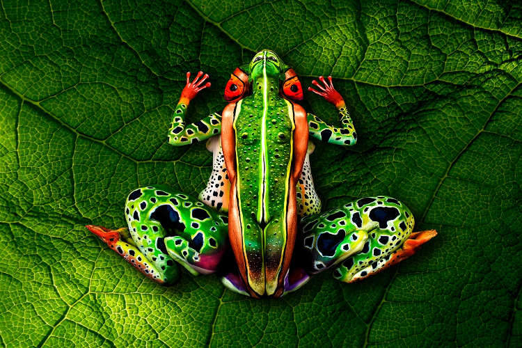 El asombroso arte corporal de Johannes Stötter 3