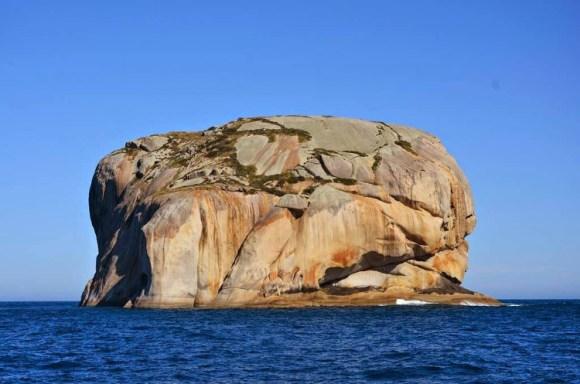 Cleft Island inaudita Isla Calavera 2