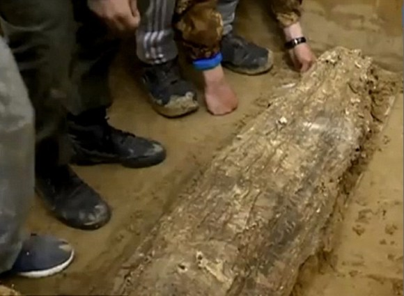 Hallan momia necropolis siberiana Salehard 2