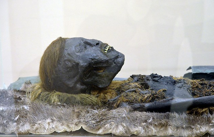 Hallan momia necropolis siberiana Salehard