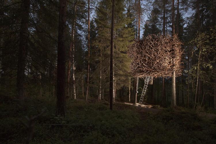 Treehotel 4