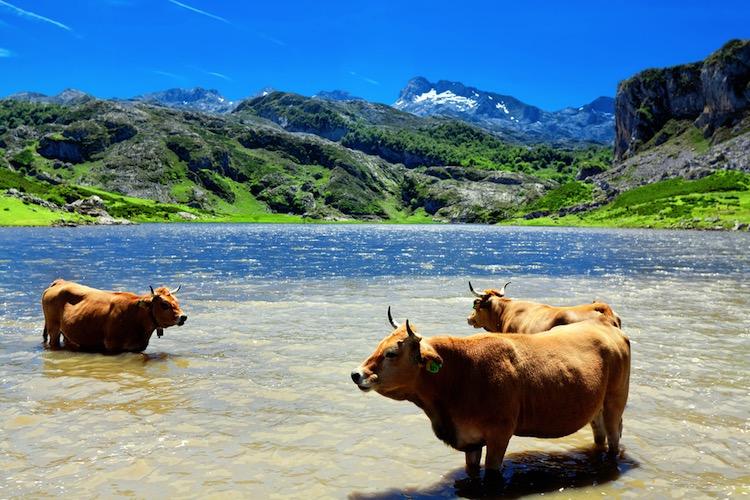 10 lugares naturales que hay que visitar en Asturias