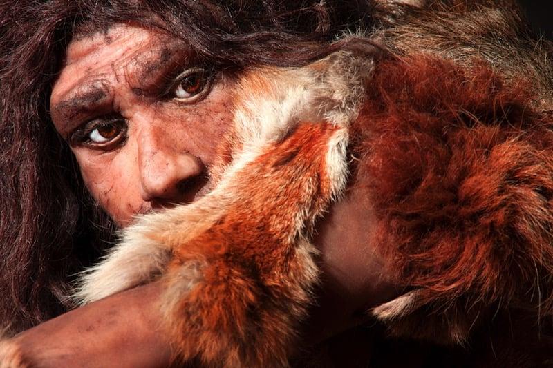 Los neandertales pudieron habitar Escandinavia