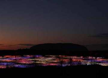 la-brujula-verde-field-of-light.-desierto-rojo