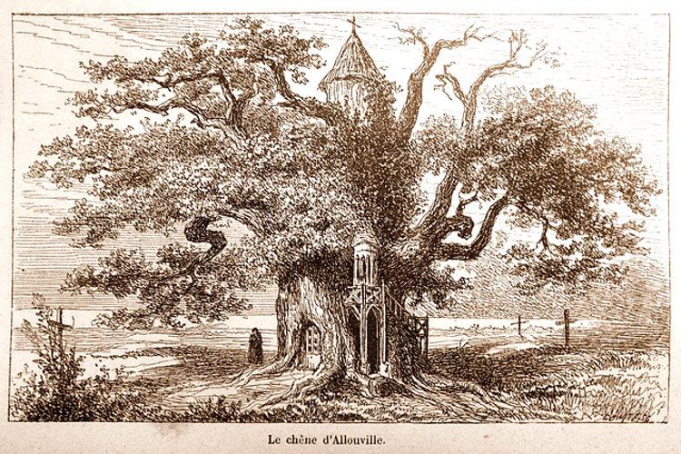 Curiosa historia capillas encaramadas roble frances 1