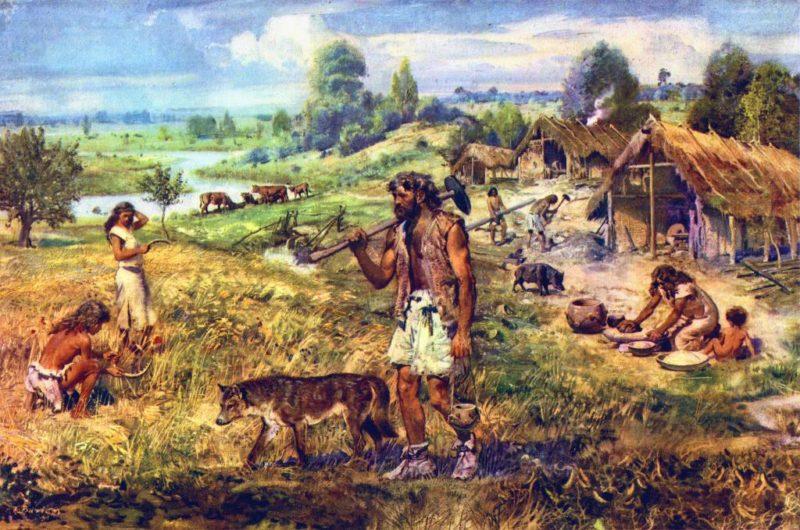 Un estudio sugiere que la agricultura propició el crecimiento de la población masculina