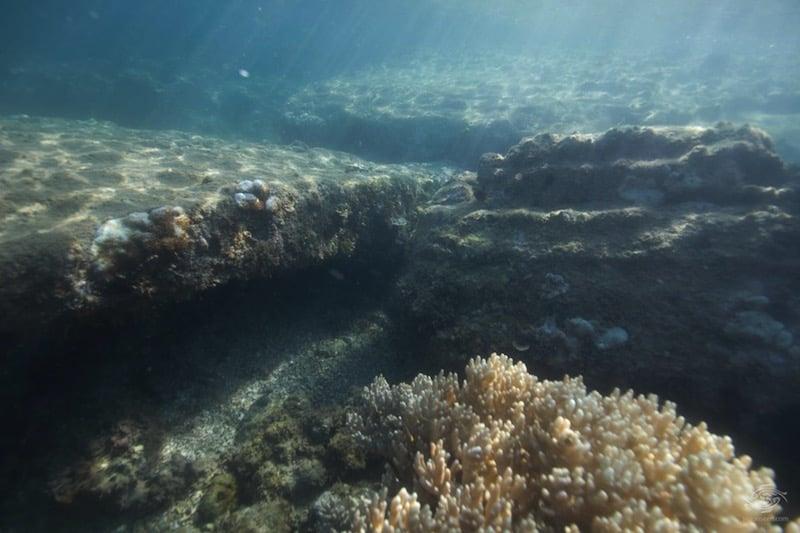 Descubren en la costa tanzana las posibles ruinas de la ciudad perdida de Rhapta
